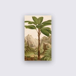 Hout - Bananenboom
