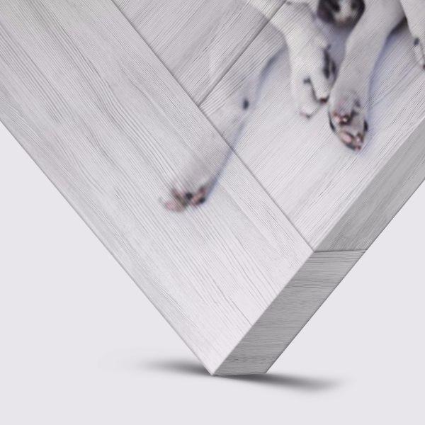 Whitewash planken